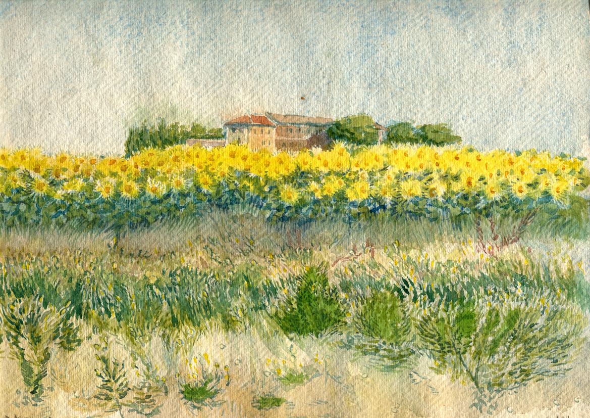 2006 Campo di girasoli